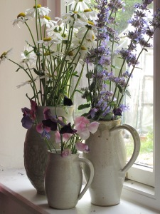 daisies catmint sweet peas