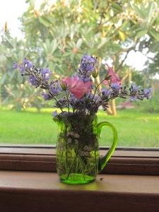 catmint geranium