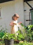 gardening blog watering