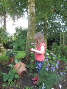 gardening blog mini beast hunting