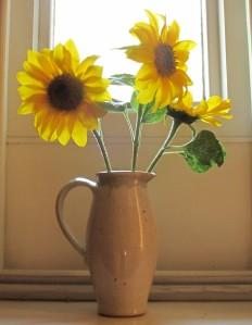 sunflowers gardening blog