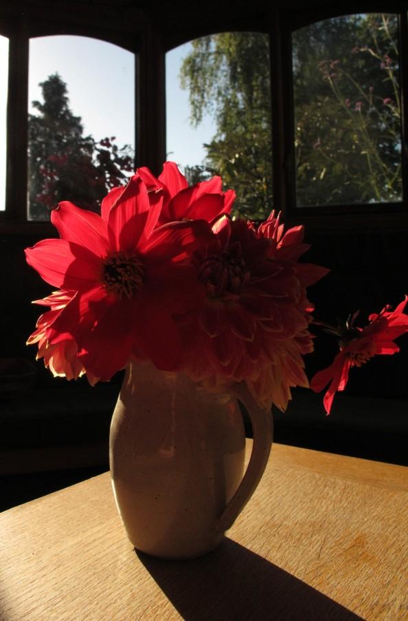 dahlia vase gardening blog