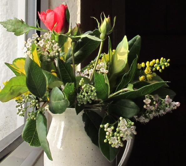 gardening blog winter flowers