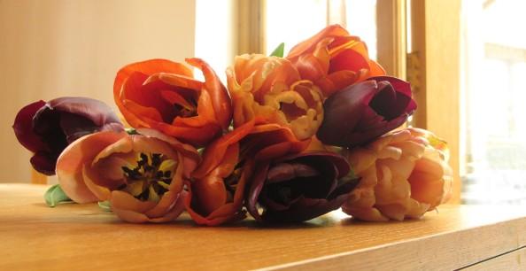 Sarah Raven brandy snap mix, cottage garden, gardening blog