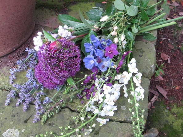 picked in the rain, cottage garden, gardening blog