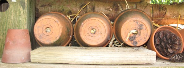 insect hotel pots