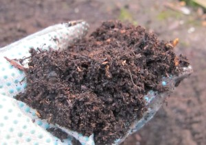 garden compost, cottage garden, gardening blog