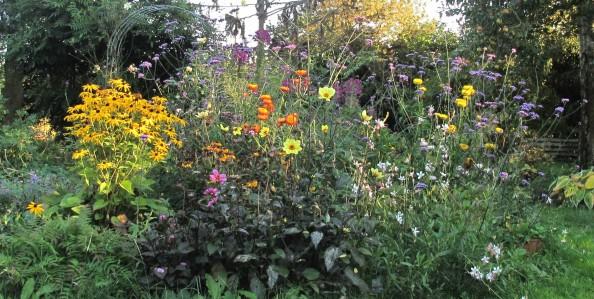 cottage garden, gardening blog