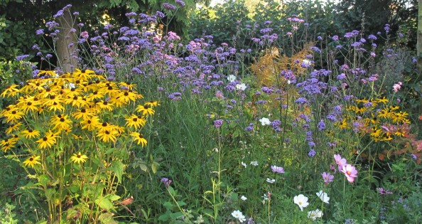 cottage garden, gardening blog